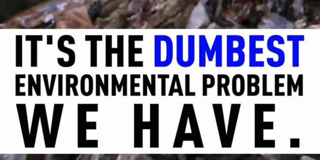 Dumbest Environmental Problem