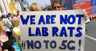 Cape Town joins global call for 5G moratorium