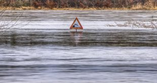 Flooding increases the chance of depression by 50%