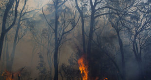Native Solutions to Big Fires
