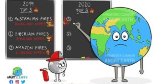 UK scientists say the fires in Australia are a taste of what the world will expe...
