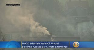 11,000 Scientists Warn Of 'Untold Suffering' Caused By 'Climate Emergency'