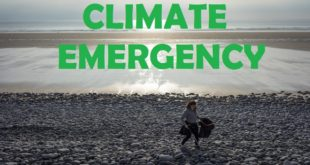 Grand Challenges Climate Emergency Challenge 2020: University Of Exeter