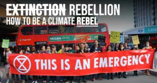 How to be a climate activist | Workshops with Extinction Rebellion
