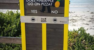 PINEAPPLE ABSOLUTELY GOES ON PIZZA! It doesn't matter if you agree or if you're ...
