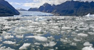 'Worst case scenario': Polar ice caps and Greenland ice sheet melting six times faster than in 1990s