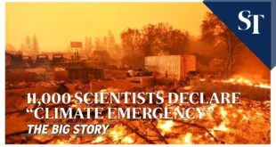 "11,000 scientists declare ""climate emergency"" 