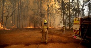 'Climate emergency' comments 'in poor taste'