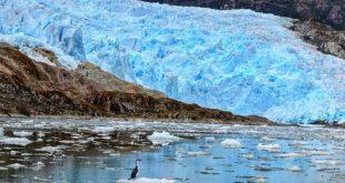 Amig nos pueden recomendar algún documental o película de Montañas o Glaciares? ...