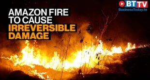 Climate emergency as  Amazon fires cause irreversible damage