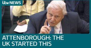 David Attenborough points climate change finger at UK | ITV News