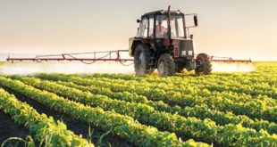 EWG Sends Open Letter to Produce Industry: Do More to Protect Consumers and Farmworkers from Pathogens and Pesticides