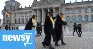 European Parliament declares 'climate emergency'
