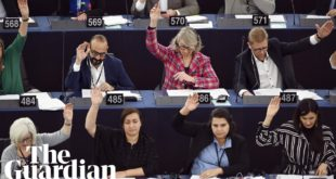 European parliament declares climate emergency: 'do we want to leave our children a world?'