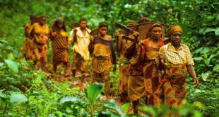Green Violence: 'Eco-Guards' Are Abusing Indigenous Groups in Africa