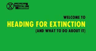 IGE Talks: Extinction Rebellion