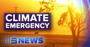 Thousands of scientists join forces to declare climate emergency | Nine News Australia