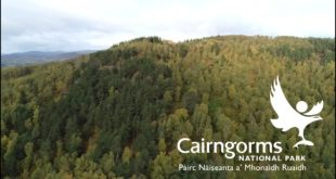 Woodland Expansion in the Cairngorms National Park
