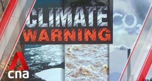 World scientists warn of climate emergency