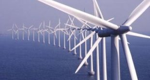 Ørsted optimistic about opportunities in Asia's offshore wind market