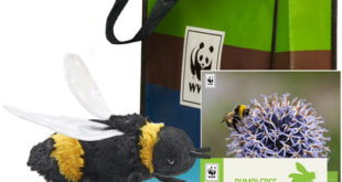 7 perfect presents for wildlife lovers
