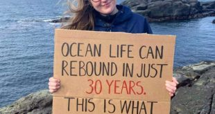 A scientific study says that ocean life could rebound in 30 years but, we have t...