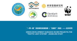 Consultation on BRI Green Light System