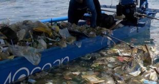 Did you know that 8 million tons of plastic waste enter our oceans every year? T...