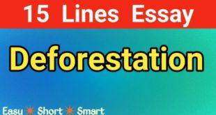 Essay on Deforestation in English || Deforestation paragraph || Deforestation cause and effect