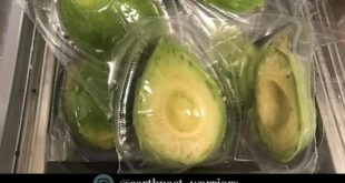 If only avocados come with biodegradable packaging.  Double tap this post if you...