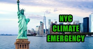 New York City Declares Climate Emergency. 70 Protesters Arrested.Pope's Sunday Solution or Rebellion
