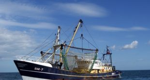 Plymouth calls for government action to help fishing industry
