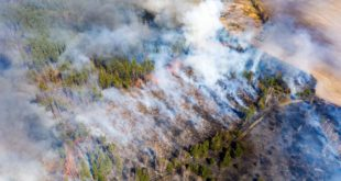 Raging Wildfires Move Closer To Chernobyl Nuclear Plant, Prompting Radiation Fears