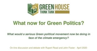 What Now for Green Politics?