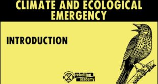 Climate and Ecological Emergency - Introduction