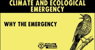 Climate and Ecological Emergency - Why the Emergency
