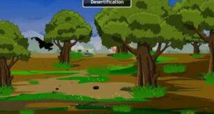 Consequences of Deforestation|Conservation of Plants and Animals|CBSE Class 8 Science