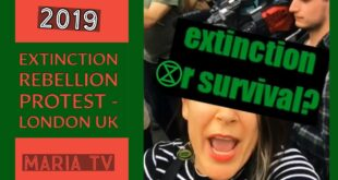 Extinction Rebellion Protest, Waterloo Bridge, London UK (April 2019)
