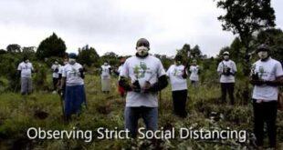 Kenya Reforestation Resumes - Maintaining Social Distancing at all Times