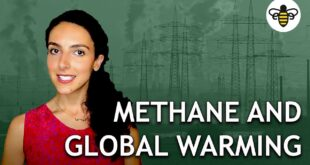 Methane and Global Warming