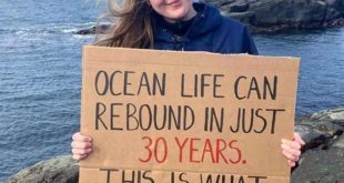 OCEAN LIFE CAN REBOUND IN JUST 30 YEARS. THIS IS WHAT I CALL HOPE ️️️️️️ . . Sci...