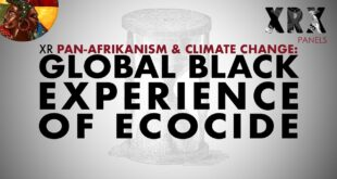 Pan Afrikanism 1: The Global Black Experience of Ecocide