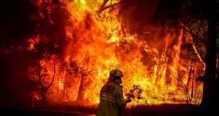 'Emotive reporting' not 'science' links climate change to bushfires