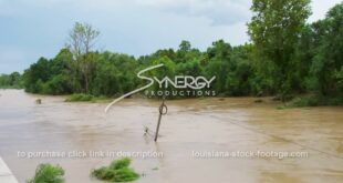 338 flooded river windy conditions from tropical storm stock footage video