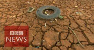 'Brazil drought linked to Amazon deforestation'