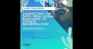 Connecting the dots: from coral bleaching to climate gentrification