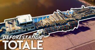 DEFORESTATION TOTALE #11   REMPLIR ENTIEREMENT LE BATEAU ! Farming Simulator 19