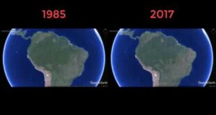 Deforestation of the Amazon rainforest 1985-2017