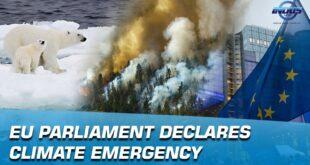 EU Parliament Declares Climate Emergency | Indus News