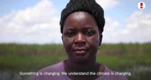 Farmers on the Frontline: Vamos Produzir